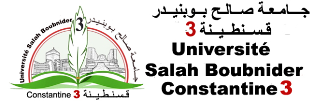 E-Learning Université  Salah BOUBNIDER_Constantine 3